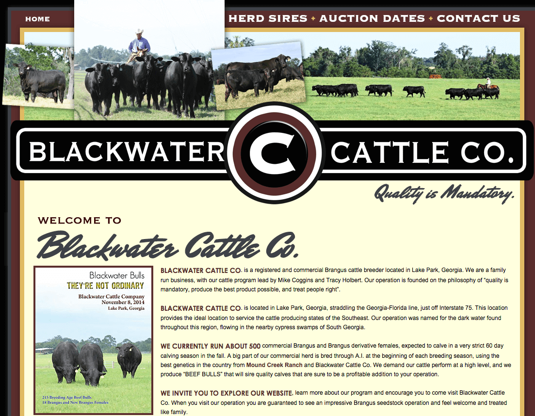 Blackwater cattle co ranch house designs inc Ranch house designs inc