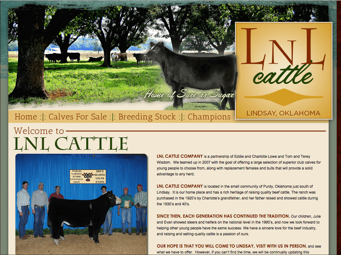 Lnl cattle ranch house designs inc for Ranch house designs inc