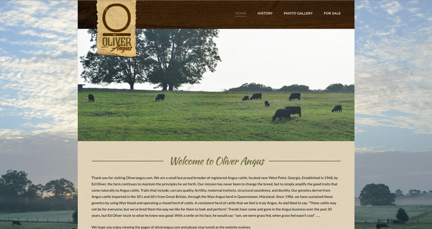 Oliver angus ranch house designs inc for Ranch house designs inc