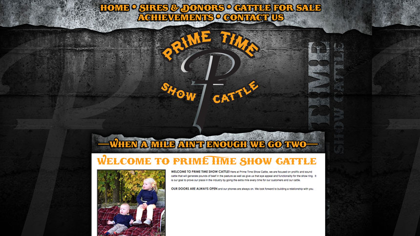 Prime time show cattle ranch house designs inc for Ranch house designs inc