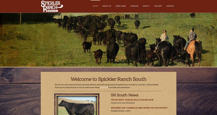 New website spickler ranch ranch house designs inc for Ranch house designs inc