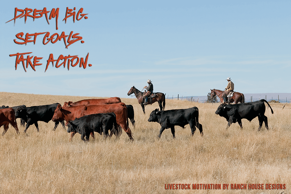 July livestock motivation graphics ranch house designs inc Ranch house designs inc