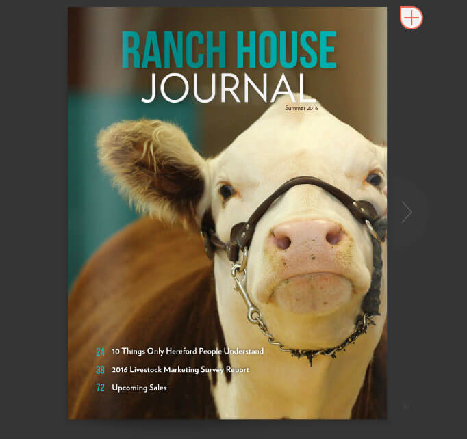 Ranch house journal ranch house designs inc for Ranch house designs inc