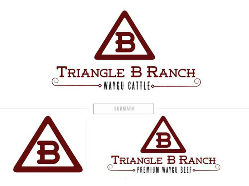 Triangle b ranch ranch house designs inc for Ranch house designs inc