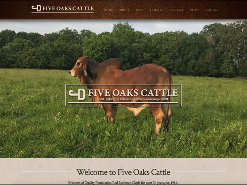 Five oaks cattle website design ranch house designs inc Ranch house designs inc