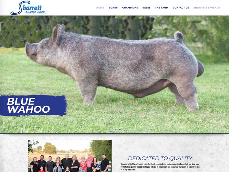 Show Pig Web Design - Ranch House Designs - Sharrett Family ... Ranch House Designs Pig on pig pool, pig bathroom, bird cage design, crate design, barn design, pig cooking, pig drawing, pig home, pig floor, bbq smoker design, silo design, pig door, pig sofa, pig painting, pig lamps, pig fabric, pig shelter, poultry farm design, pig accessories, pig food,